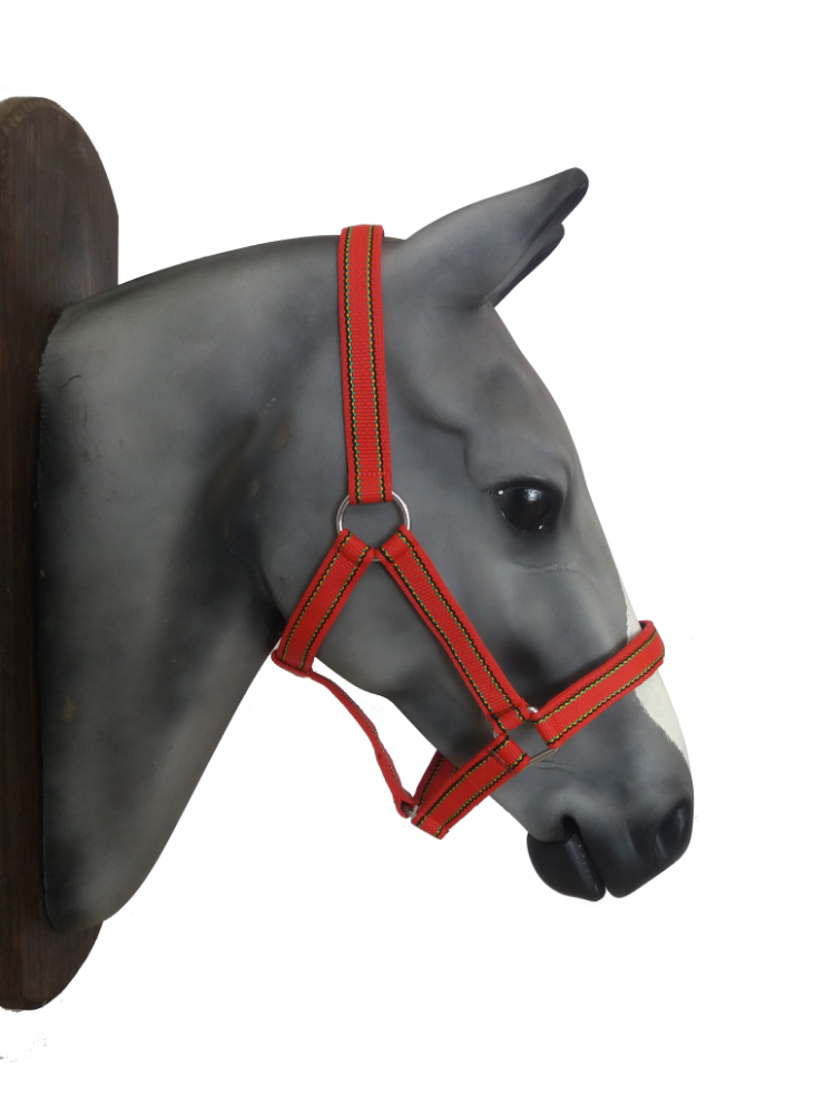 Nylon Horse Halter- available in XL sizes