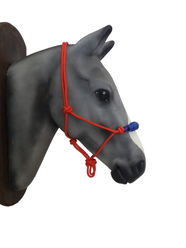 Rope halter- reinforcement on the nose