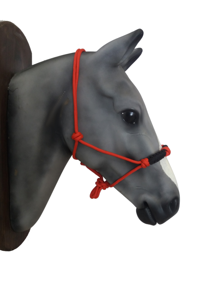 4-Knot Rope Halter - reinforcement two tone nose band