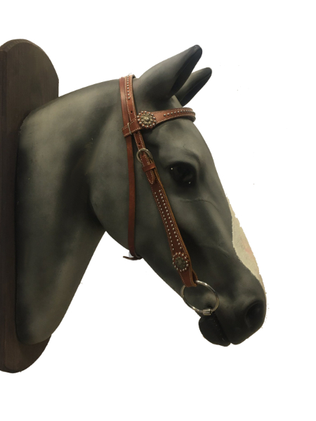 Western leather bridle